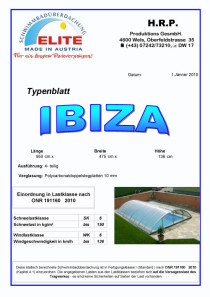 Musterdatenblatt Modell Ibiza